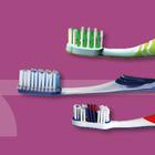 Bürstenmann GmbH: Zahnpflege: Zahnbürsten für Erwachsene